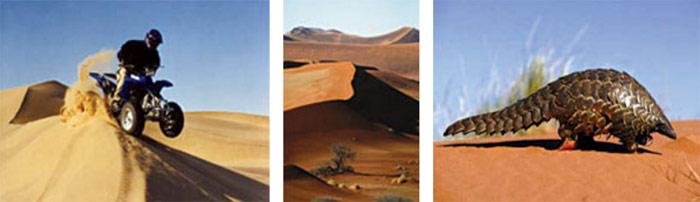 namibia-home